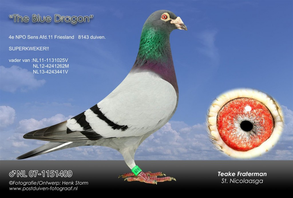 NL 07-1151409